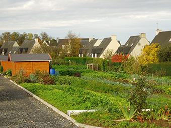 Galerie photos jardins familiaux for Jardin familiaux